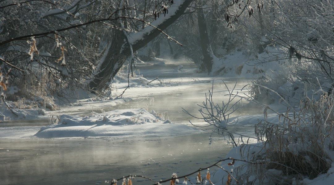Winter am Graselweg